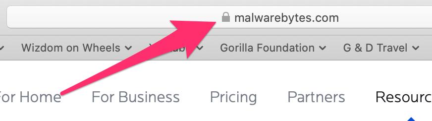 Safari browser tab with MalwareBytes.com in address field