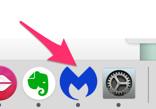 Blue MalwareBytes icon on the dock - click on it.