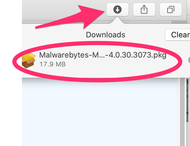 Downward pointing arrow - the downloads icon in the upper right of the Safari window - click the icon and double-click MalwareBytes.pkg installer package.